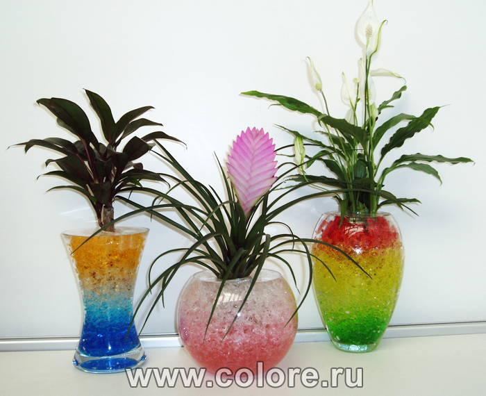 Лампы для комнатных растений купить