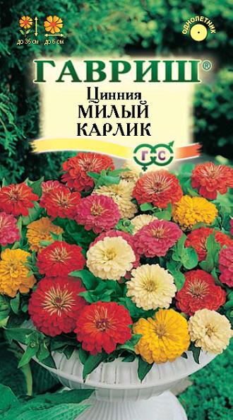 Садовые цветы на ц